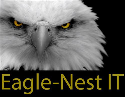 Logo van Eagle-Nest IT